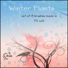 Winter Plants - http://www.123freebrushes.com/winter-plants/