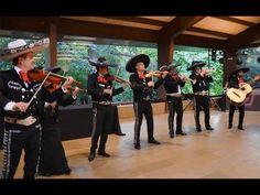 #LaMusicaRompeFronteras - Flashmob de Mariachi en España - YouTube