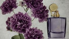 Did Oeillet Bengale by #AedesdeVenustas make it to the #Bestof2104 #fragrances? http://fragrance.about.com/od/Best-of-Lists/tp/Best-Fragrances-of-2014.htm #perfume #scent #aedes #carnation #niche