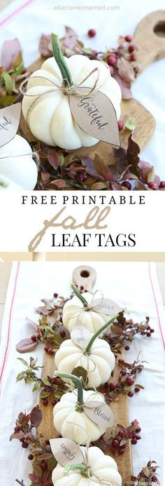 Here are some free fall leaf printables. These Free Fall Leaf printables are such a pretty touch to add to your pumpkins, table settings, thankful trees, etc this Autumn by Ella Clarie. Thanksgiving Centerpieces, Thanksgiving Crafts, Fall Crafts, Thanksgiving Table Decor, Fall Centerpiece Ideas, Thanksgiving Name Cards, White Pumpkin Centerpieces, White Pumpkin Decor, Thanksgiving 2017