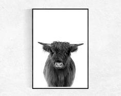 Highland Kuh Print, Kuh-Poster, Farm Animal-Print, schwarz und weiß, Tier-Fotografie, Kinderzimmer Dekor, Wandbilder, Bauernhaus Kunstdruck