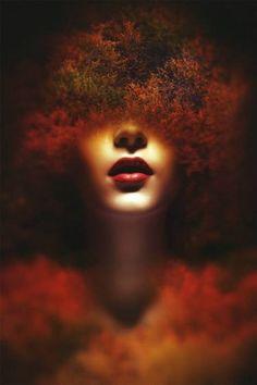 "Saatchi Art Artist Federico Bebber; Photography, ""Chant d'automne"" #art"