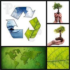 Eco Collage