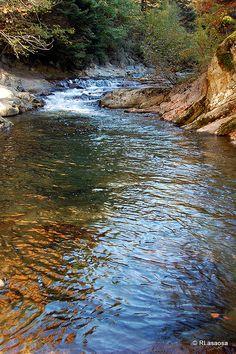 Bosque del Irati    El río Urbela en la Selva de Irati, en las cercanías de la ermita de la Virgen de las Nieves..