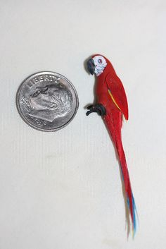 Miniature Dollhouse Colorful Exotic Artisan Parrot Bird 1:12 Scale Perch Anywhere