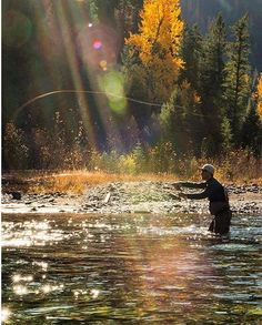 Zen moments on fall streams Fernie B.C.                                                                                                                                                                                 More