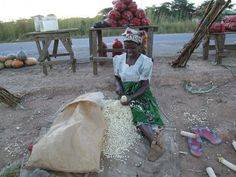 With adequate extension support, women farmers can increase productivity and food security in Africa. Credit: Busani Bafana/IPS
