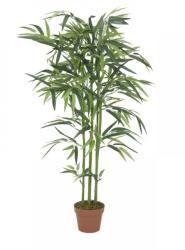 Europalms Bambuszfa 120-180 cm Dress Neck Designs, Plants, Plant, Planets