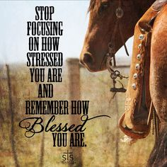STS Ranchwear - Timeline Photos