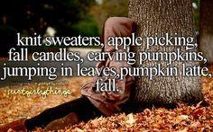 This is fall in a nutshell