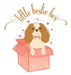 Little Bestie Box | Canada-wide Subscription Box for Dogs