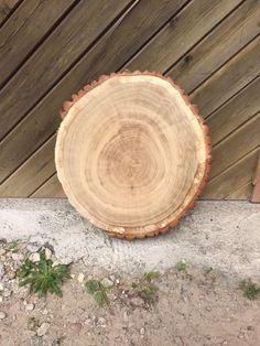 Baumscheibe, Tischplatte, Eiche, rustikal, Tisch, 55 cm geschliffen, Couchtisch in Garten & Terrasse, Möbel, Tische | eBay