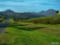 On the road between Stellenbosch and Paarl, South Africa.