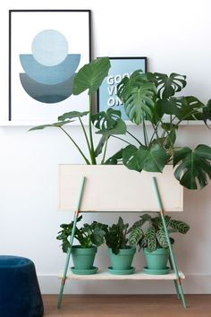decor Green DIY plant stand and planters from Enter My Attic. Check out 23 Planters You Can DIY! Attic Renovation, Attic Remodel, Diy Planters, Planter Pots, Planter Ideas, Raised Planter, Diy Plant Stand, Home And Deco, Plant Decor
