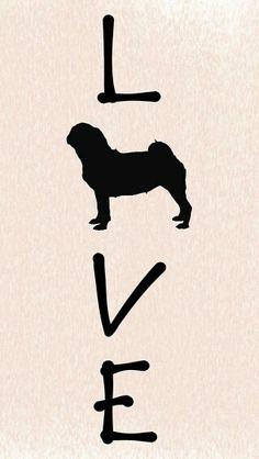 Pug ♡                                                                                                                                                                                 More