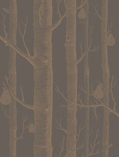 Cole & Son Contemporary Restyled Wallpaper Collection Woods and Pears in Bronze and Black wallpaperdirect