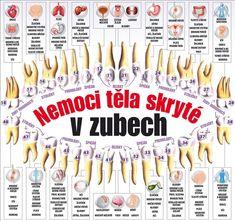 Nemoci těla skryté v zubech Health Advice, Health Care, Face Yoga, Acupuncture, Body Shapes, Kids And Parenting, Reiki, Dental, Health Fitness