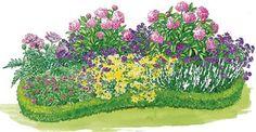 rosa staudenbeet mit Pfingsrosen - das pflanz ich