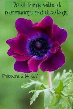 Philippians 2:14 KJV