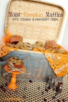 Pumpkin Muffins--with Craisins and Chocolate Chips theidearoom.net