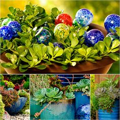 Patti Brisebois' Manitoba zone 3 garden.To add punches of colour to her  garden, Patti has numerous plantings in blue containers.
