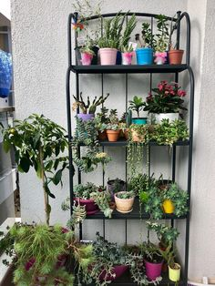 Container gardening, check the gardening post article ref 1697533991 to grow flowers in a container. Small Balcony Garden, Outdoor Balcony, Indoor Garden, Garden Art, Indoor Plants, Garden Design, House Plants Decor, Plant Decor, Outdoor Bakers Rack
