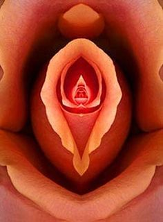 Rose Yoni - (Yoni is a sacred word that honours the vagina)