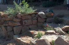 A simple and easy-to-build rock wall for a garden. I have a friend with two raised garden plots with a surrounding rock wall that is just awesome. Garden Retaining Wall, Stone Retaining Wall, Flat Stone, Dry Stone, Garden Yard Ideas, Patio Ideas, Garden Paths, Backyard Ideas, Rock Walkway
