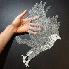 Paper carvings: Red-tailed hawk