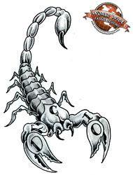 scorpio tattoo - Google Search