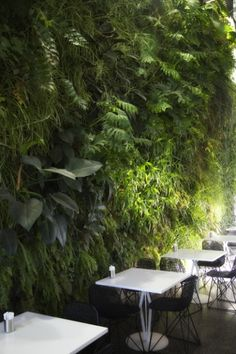 GreenWall at the Gauge by The Greenwall Company | Vertical Green - More on the RSD Blog www.rsdesigns.com.au/blog/