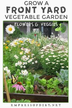 A virtual tour of a small city home garden featuring a front yard vegetable garden, flowering perennials, herbs, and fruit trees. Vegetable Garden Design, Garden Landscape Design, Planting Vegetables, Growing Vegetables, Veggies, Common Garden Plants, Garden Mirrors, Clematis Vine, Garden Features