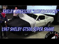"""SHELBY AMERICAN """"REINTRODUCES"""" 1967 FORD SHELBY GT500 SUPER SNAKE Mustan..."""