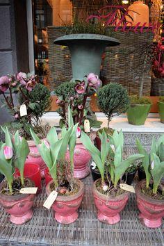 Flowers arrangement in Karlsruhe, Germany