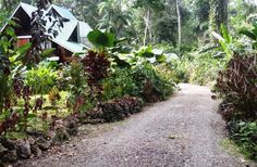 For Sale: Estate Home in Rainforest, Puerto Viejo, Costa Rica