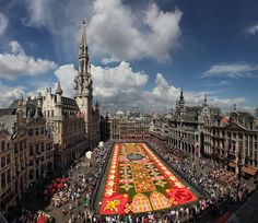 Biggest carpet of flowers in the world, Brussels, Belgium. | Flickr - Photo Sharing!