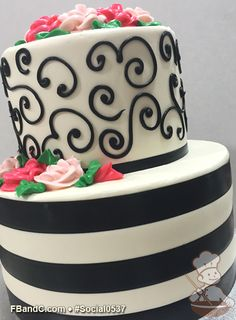 "Social 0537 | 9""+6"" 