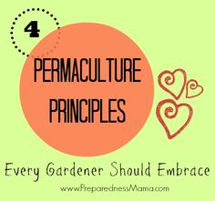 Embrace permaculture and learn to garden smarter not harder. These 4 permaculture principles will get you growing more food, in less space with less effort. Permaculture Principles, Permaculture Design, Organic Gardening, Gardening Tips, Gardening Vegetables, Growing Vegetables, Grow Your Own Food, Garden Inspiration, Garden Ideas