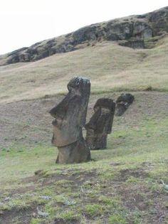 Easter Island Best of Easter Island Tourism - Tripadvisor Easter Island, Mysterious, Chile, Trip Advisor, Islands, Garden Sculpture, Tourism, Wanderlust, Vacation