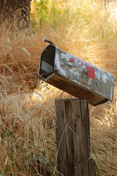 abandoned rural mail box still waiting for mail - By Eric Ward