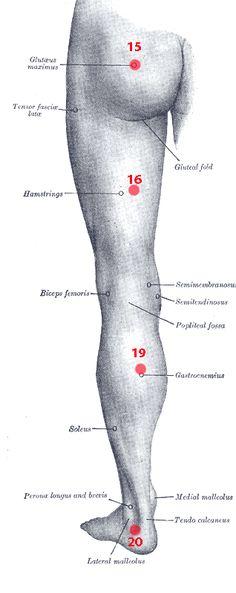 Méthode des points de Knap - Ostéopathe à Castres