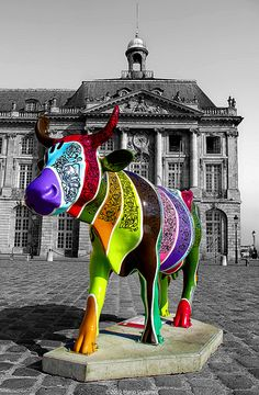 Cow Parade around the world!