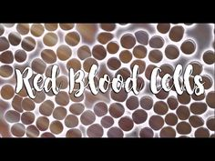 Every drop of blood contains millions of red blood cells. Each one has a job to transport fresh oxygen around the body and organs, and to bring carbon dioxid. Red Blood Cells, Health, Health Care, Salud