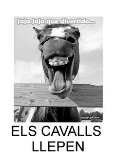 ISSUU - Projecte Els cavalls by Josep Antoni