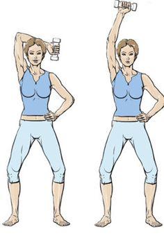 Exercice 1 : l'ensemble des bras