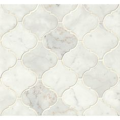 Found it at AllModern - Honed Marble Mosaic Tile in White Carrara