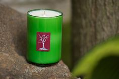 Earth friendly soy candles by Nicolette Candle are the perfect gift this year. #Holidose #DoseMarket