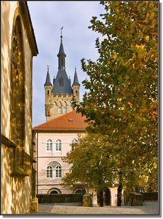 October in Bad Wimpfen, Germany Copyright: Paolo Luigi Germano