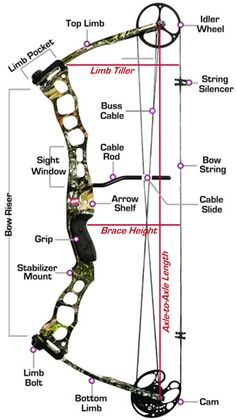 Compound Bow Selection Guide. There is a lot to read on this site!