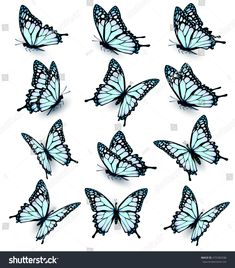 Blue Butterfly Discover Collection Blue Butterflies Flying Different Directions Stock Vector (Royalty Free) 475383208 Collection Blue Butterflies Flying Different Directions Stock Vector (Royalty Free) 475383208 Butterfly Drawing, Butterfly Tattoo Designs, Butterfly Painting, Realistic Butterfly Tattoo, Butterfly With Flowers Tattoo, Butterfly Outline, Butterfly Stencil, Borboleta Tattoo, Art Papillon